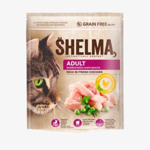 shelma-adult_chicken