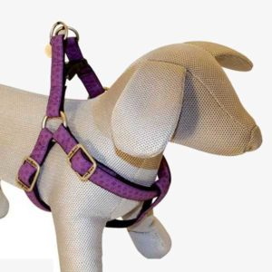 Szelki dla psa Croci fioletowe
