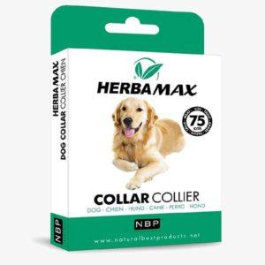 Herba Max Dog obroża przeciw pasożytom